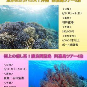 2019Liberty沖縄ツアーのサムネイル