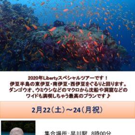 西伊豆ボート巡りポスターのサムネイル