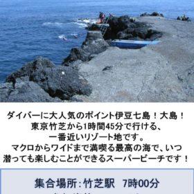 伊豆大島ポスターのサムネイル