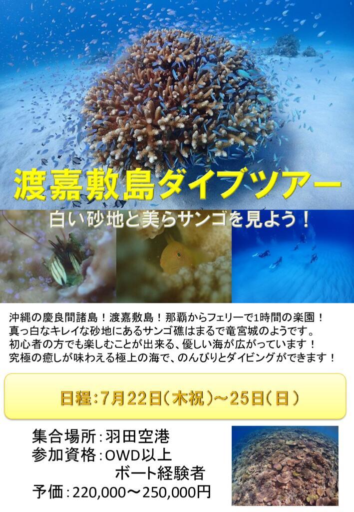 渡嘉敷島ツアーのサムネイル